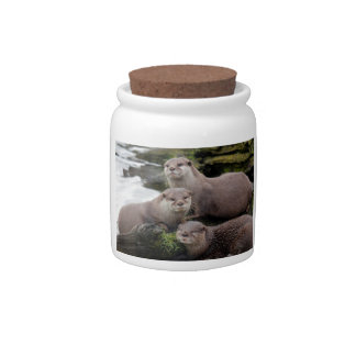 Trio of Otters Candy Jars