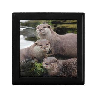 Trio of Otters Jewelry Box
