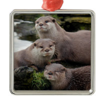 Trio of Otters Metal Ornament
