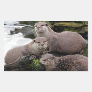 Trio of Otters Rectangular Sticker
