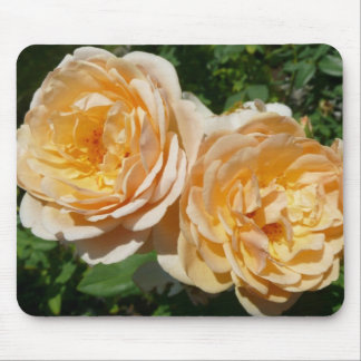 Trio of Peach Roses Mouse Pad