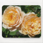 Trio of Peach Roses Pretty Floral Mouse Pad