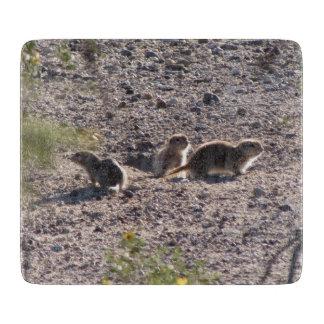 Trio of Round-tailed Ground Squirrels Cutting Boards