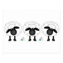 Trio Of Sheep Postcard
