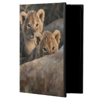 Trio of six week old Lion cubs sitting iPad Air Cover