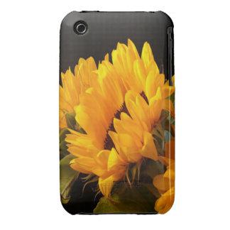 Trio of Sunflowers iPhone 3 Case-Mate Cases