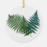 Trío tropical del helecho ornaments para arbol de navidad