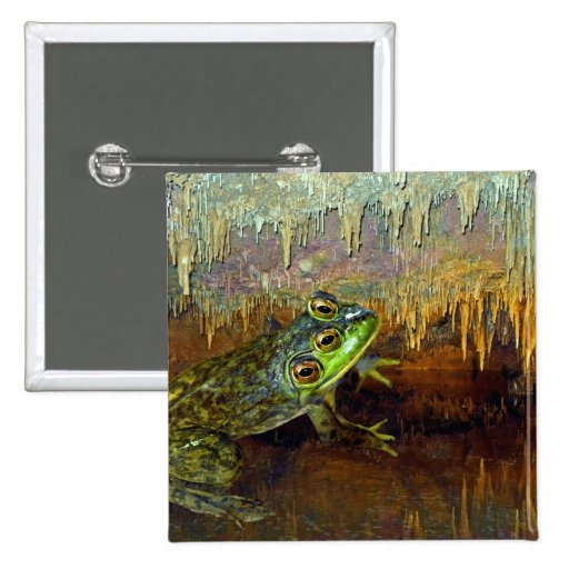 Triopse Fantasy Frog in a Cave Pinback Buttons