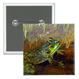 Triopse Fantasy Three-Eyed Frog in a Cave Pool Buttons