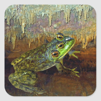 Triopse Fantasy Three-Eyed Frog in a Cave Pool Square Sticker