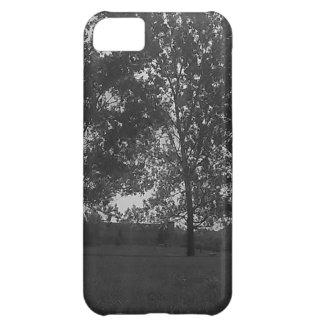 Tríos del parque de Mountview Funda Para iPhone 5C