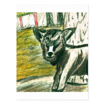 Trip to the Zoo - Baby Goat Postcard
