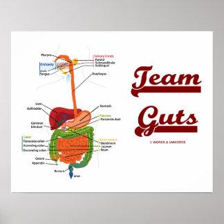 Tripa del equipo (humor anatómico del sistema dige posters