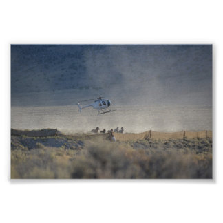 Triple B Round-up Butte Valley Nevada Poster