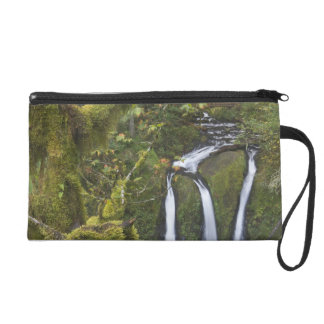 Triple Falls, Columbia River Gorge 2 Wristlet Purses