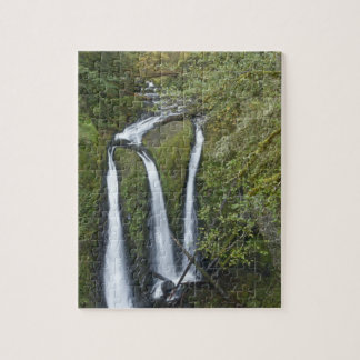 Triple Falls, Columbia River Gorge Puzzle