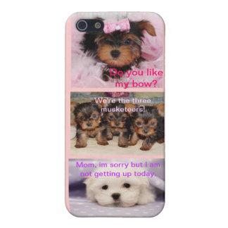 Triple Puppy iPhone5 Case
