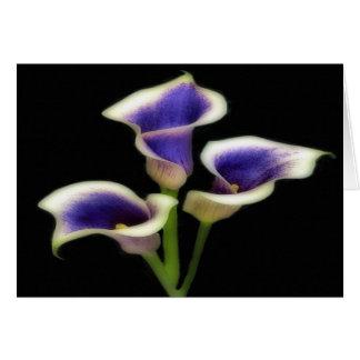 Triple Royal Purple Floral Greeting Cards