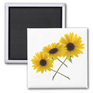 Triple Sunflower 2 Inch Square Magnet