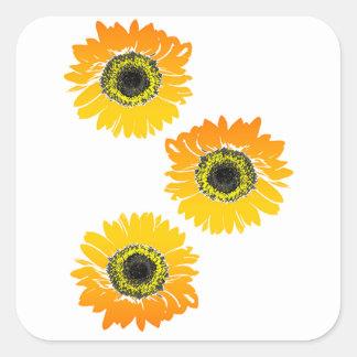 Triple Sunflowers Square Sticker