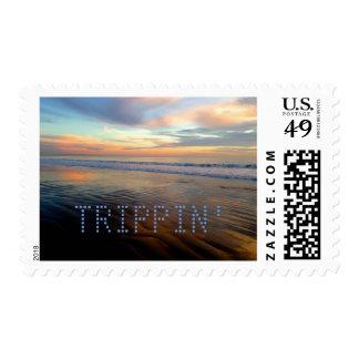 Trippin hacia fuera que calma sensación de la sellos