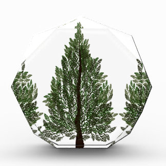 Tripple Pines Acrylic Award
