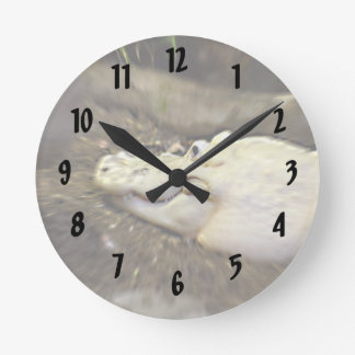 trippy white alligator zoomed reptile round clock