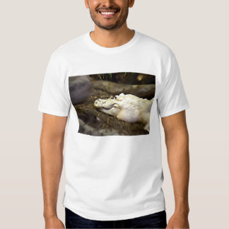 trippy white alligator zoomed reptile t shirt