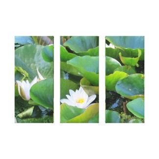 Tríptico de Lillies del agua Impresión En Lienzo