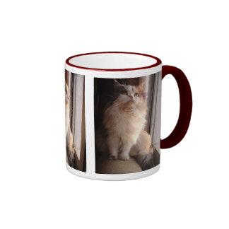 Triptych cat photo mug