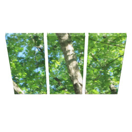 Triptych Forest Canvas Print