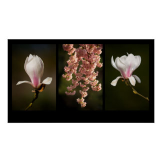 Triptych Spring Poster
