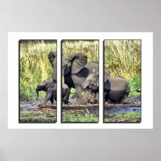 Triptych wildlife poster