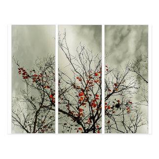 Triptych with natural motive post cards