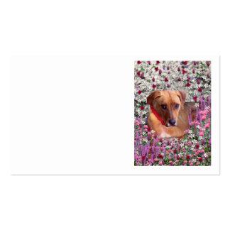 Trista el perro del rescate en flores tarjeta de visita