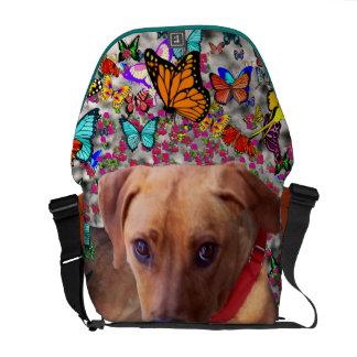 Trista el perro del rescate en mariposas bolsas de mensajeria