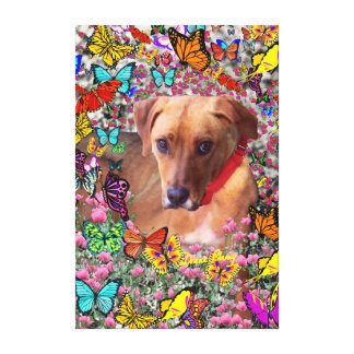 Trista the Rescue Dog in Butterflies Canvas Print