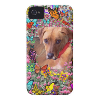 Trista the Rescue Dog in Butterflies iPhone 4 Case-Mate Case