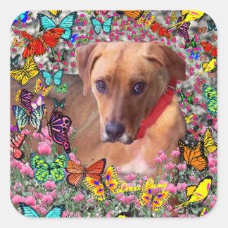 Trista the Rescue Dog in Butterflies Square Sticker