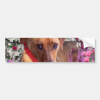 Trista the Rescue Dog in Flowers Bumper Sticker