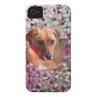 Trista the Rescue Dog in Flowers iPhone 4 Covers
