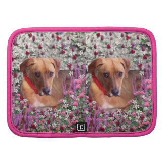 Trista the Rescue Dog in Flowers Organizers
