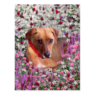 Trista the Rescue Dog in Flowers Postcard