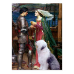 Tristam and Isolde-Old English Sheepdog 1 Post Card