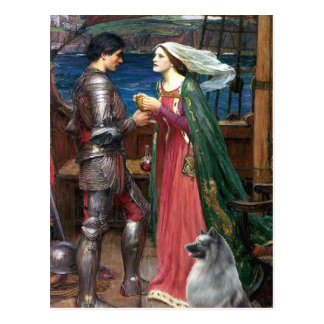 Tristan and Isolde - Keeshond (C) Postcard
