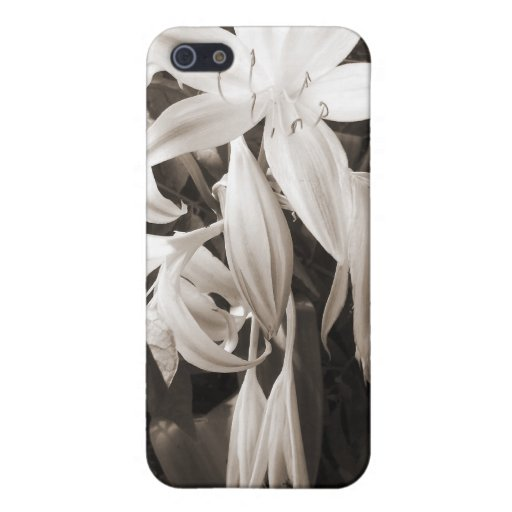 Tristeza hermosa - sepia iPhone 5 cobertura
