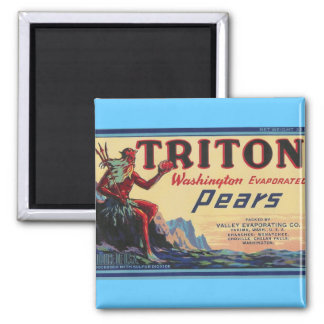 triton pears magnet with blue background
