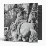 Tritons grooming two horses of the sun 3 ring binder