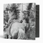Tritons grooming two horses of the sun 3 ring binders