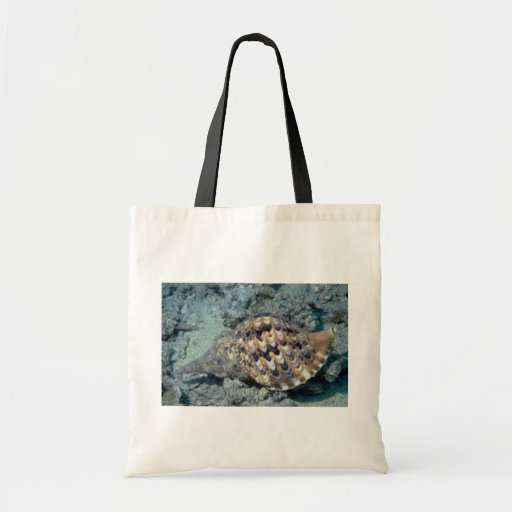 Triton's trumpet (Charonia tritonis) Shell Bag